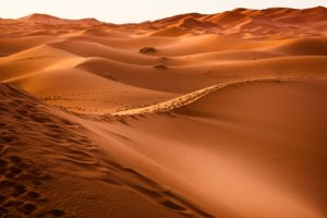 Fez To Marrakech 3 Days Desert Tours
