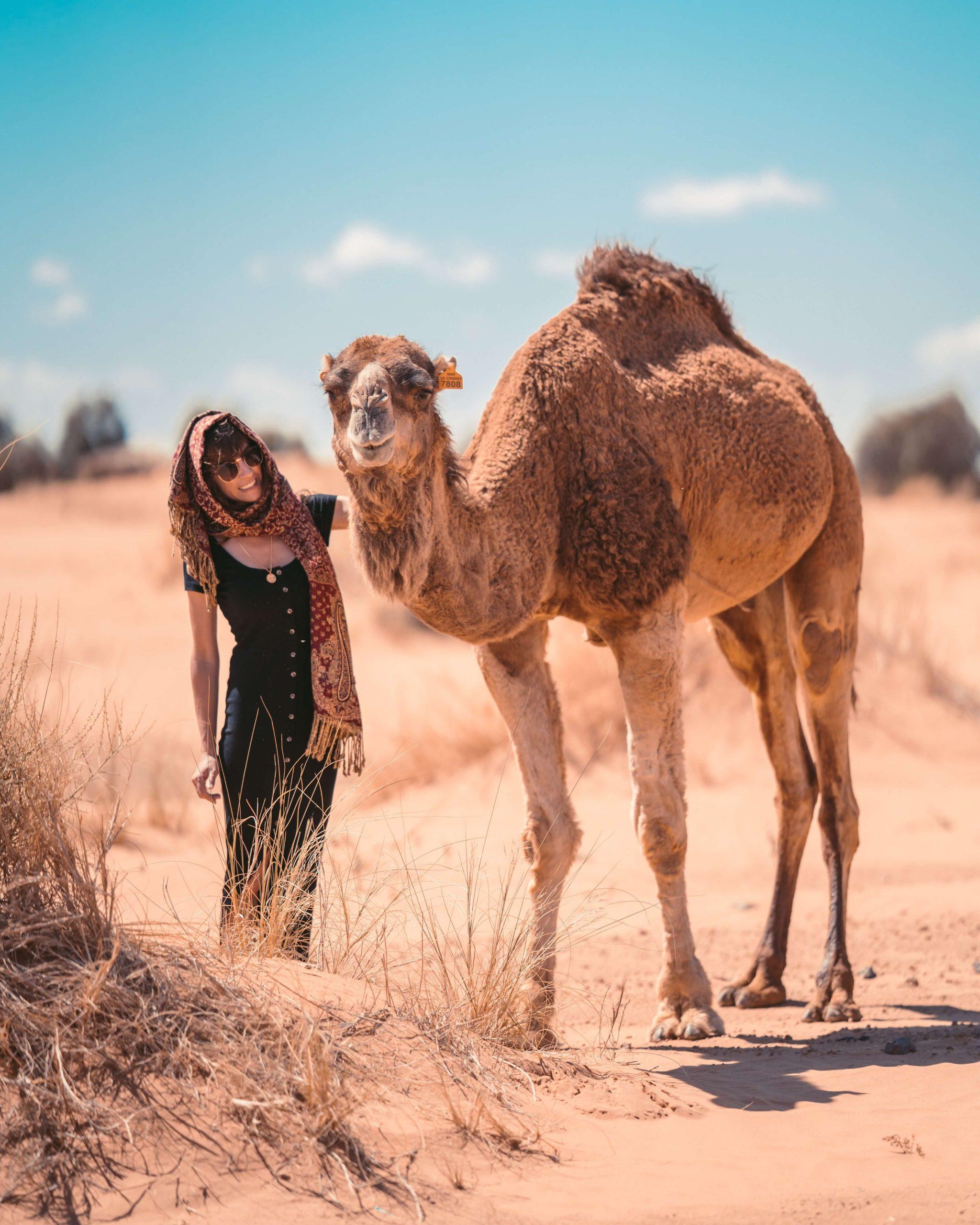 10 days Tangier to Marrakech Desert tours Itinerary
